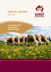 SPA Annual Report_FA_cover